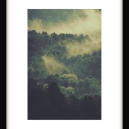Art Print Green Foggy Forest