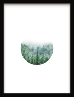 Art Print Modern Nature