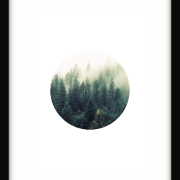 Art Print Contemporary Forest