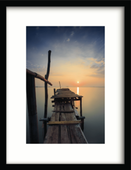 Art Prints SUN SHY_CIREBON