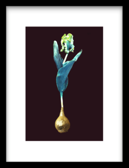 Art Print Blue Gold